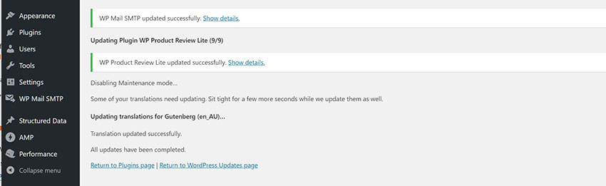 Update WordPress themes and plugins 4